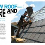 Mark_ExtremeHowTo_Roof_2012_March