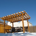 Cedar Pergola and Fence Brave The Seasons.
