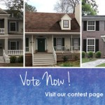 Shake it Up Finalists DaVinci Roofscapes