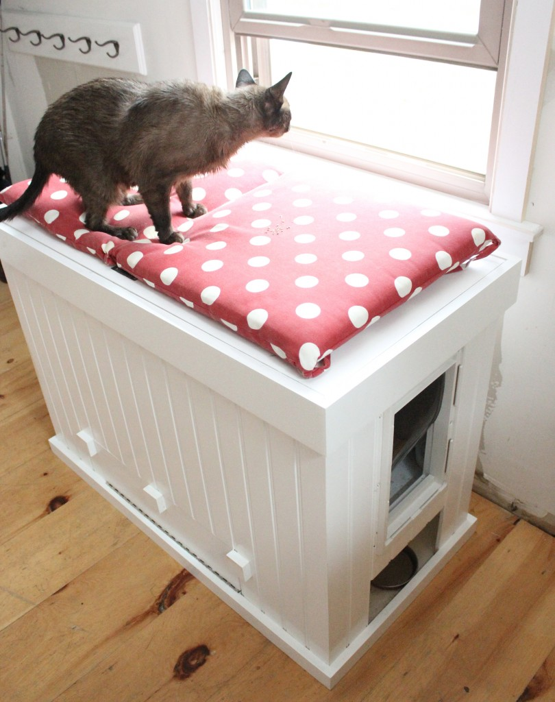 Mess Free Cat Litter Box