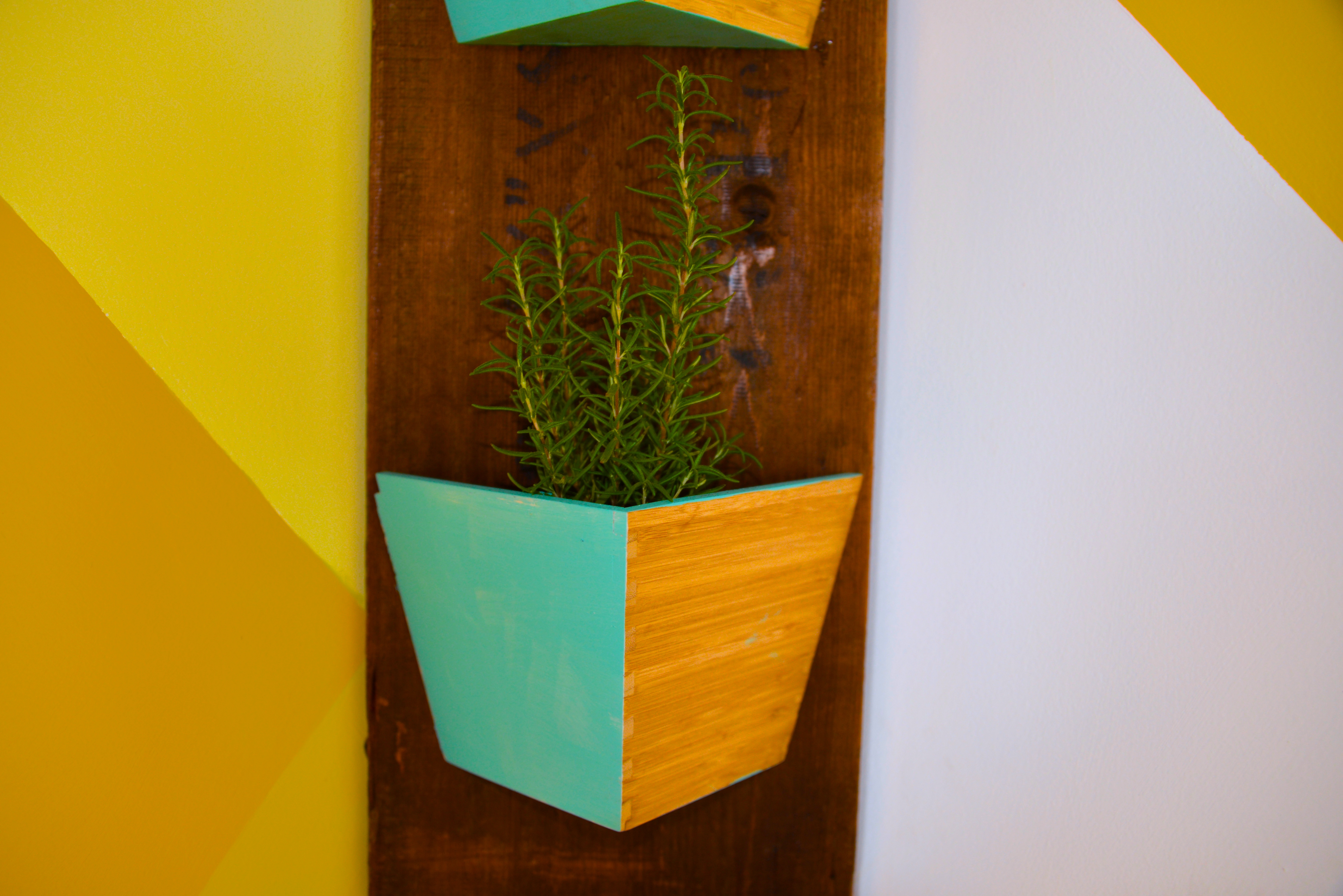 2015_MyFixitUpLife_Sun Room_Mud Room_Yellow Pattern_Flower Box_Plants_After_Rosemary