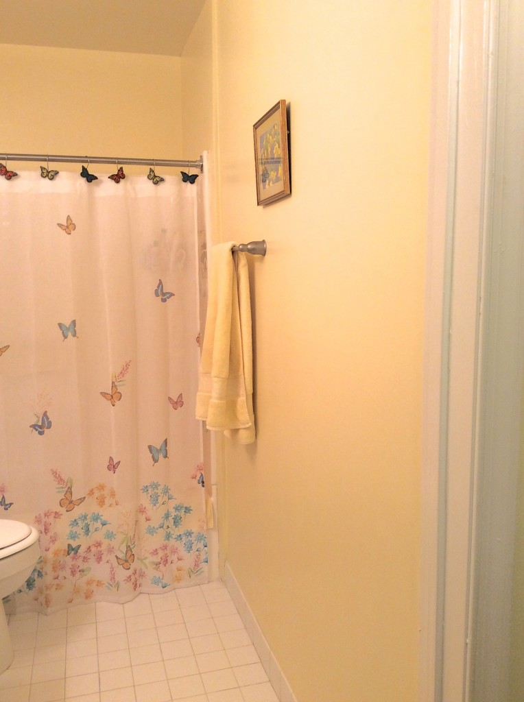 Small bathroom mom before MyFixitUpLifeIMG_2014