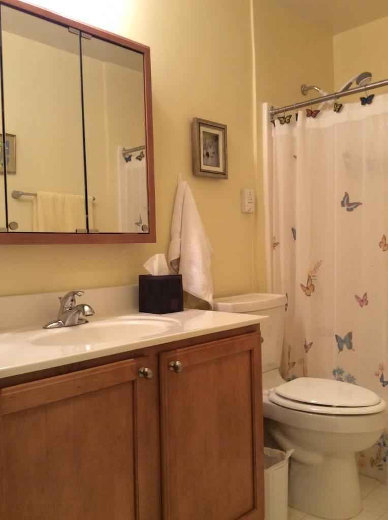 Small bathroom mom before MyFixitUpLifeIMG_2014