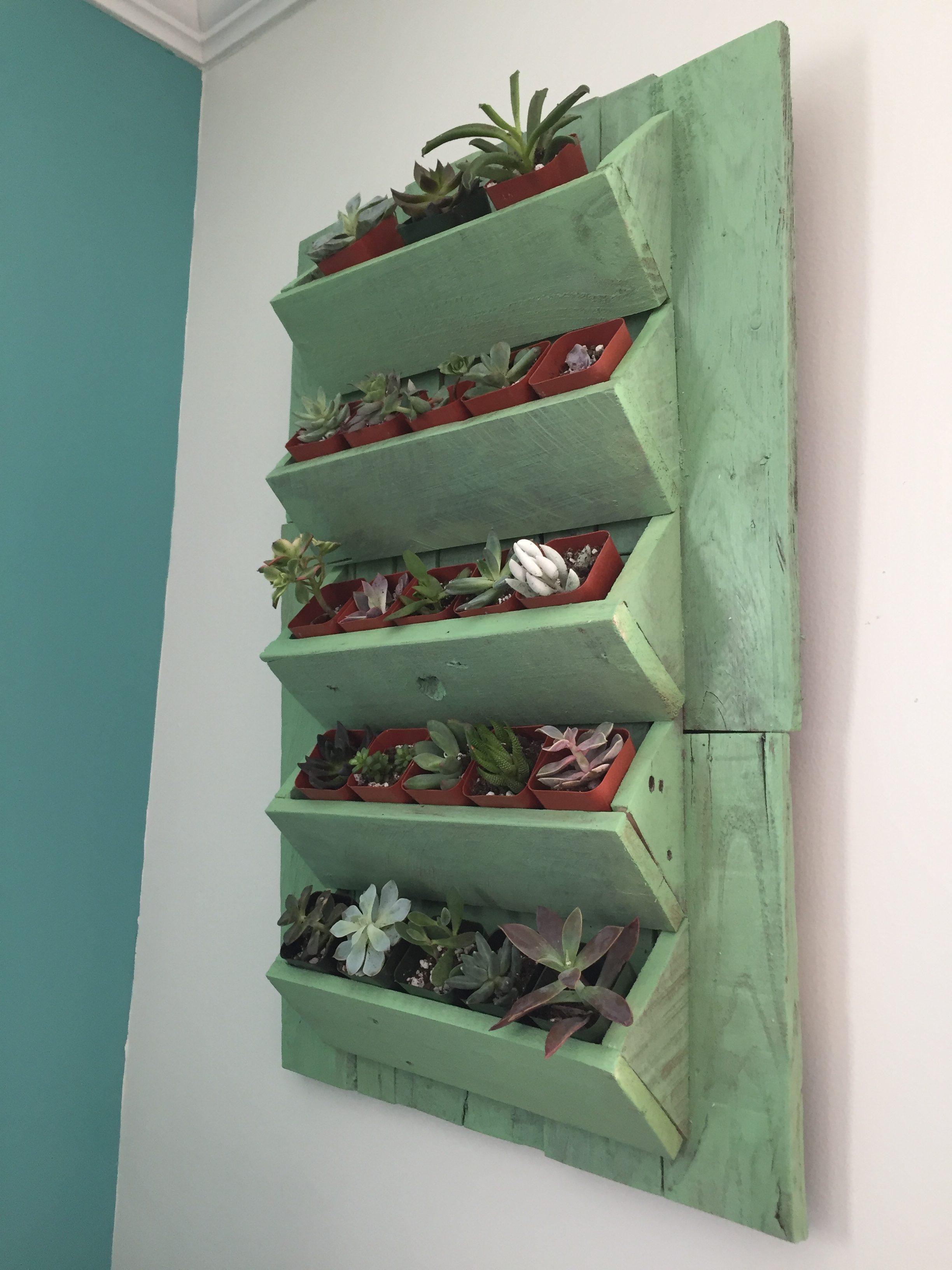 16f Minwax Succulent Pallet Wood Wall Art