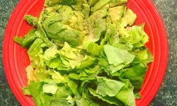 Salad avocado red plate Alzheimer's disease MyFixitUpLife Theresa